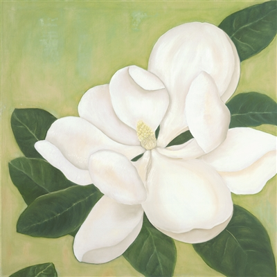White Magnolia oil painting by Caitlin Coreris