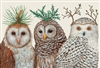 Winter Owl Paper Placemats