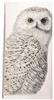 Large kitchen towel with Owl design