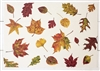 Fall Foliage Paper Placemats