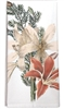 Red and Cream Amaryllis Kitchen Towel