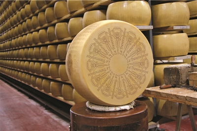 Parmesan Cheese from Parma, Italy
