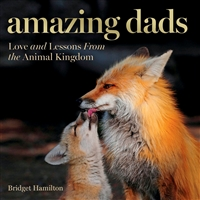Book with foxes on the cover